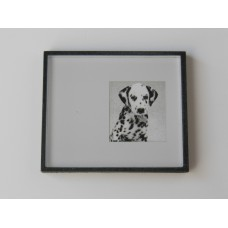Black Framed Dalmatian Dog Print