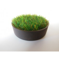 Short Round Rusted Tray with Wheat Grass