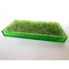 Green Rectangle Lucite Tray with Wheat Grass