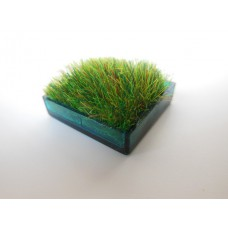Teal Square Lucite Tray with Wheat Grass