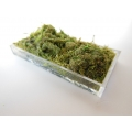 Clear Rectangle Lucite Tray with Moss
