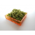 Orange Square Lucite Tray with Moss