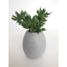 Round Tall Pot with Plant