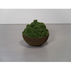 Small Rust Pot with Plant