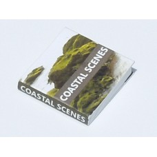 Coastal Scenes Book