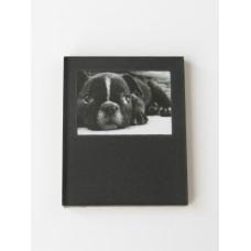 Frameless Puppy Print