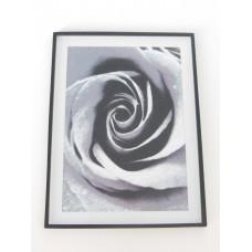 B&W Rose Print Black Frame