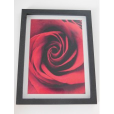Red Rose Print Thick Black Frame