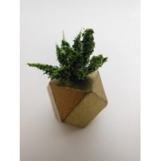 Gold Hex Vase