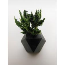 Black Hex Vase